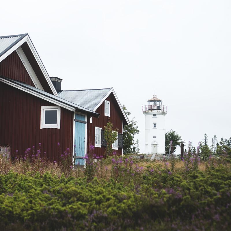 Stora Fjäderägg - Holmöarna, Norra Kvarken