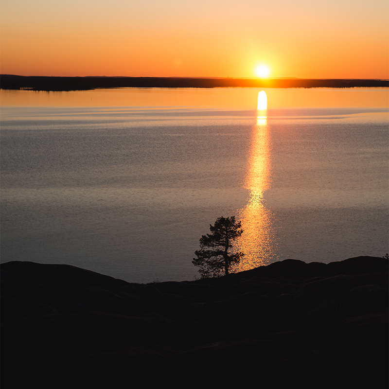 Bjuröklubb, Skellefteå Kommun
