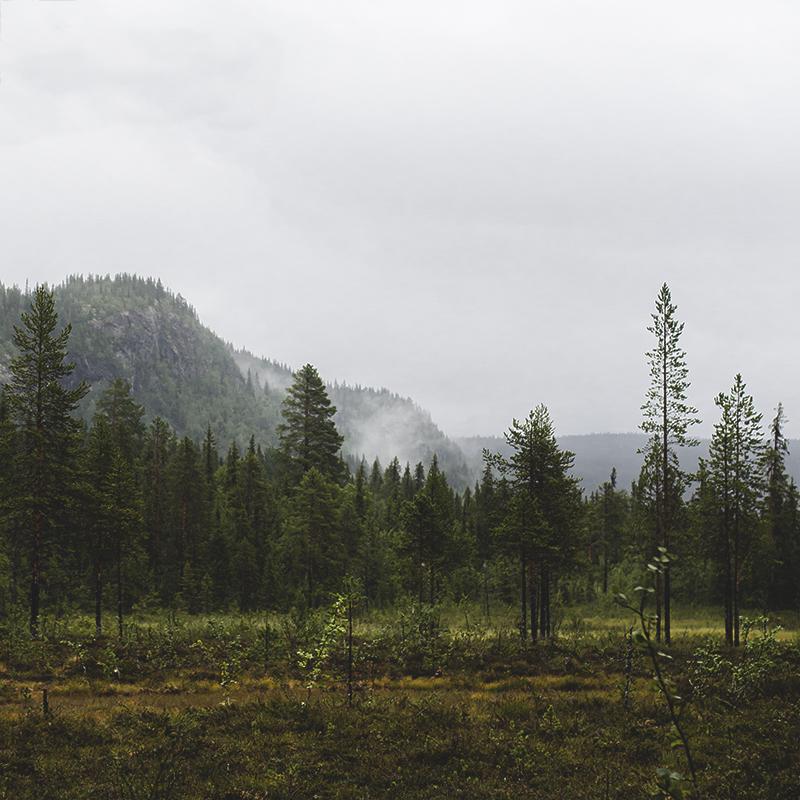 Brudslöjans Vattenfall i Sorsele kommun