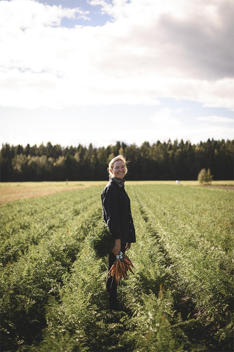 4 kilometer lokalproducerat har vi här. 200 meter morötter i tjugo rader.